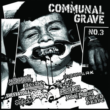 "V/A COMMUNAL GRAVE n°3 (pro-printed 100 pages A4 fanzine + 12""LP compilation)"