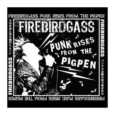 """FIREBIRDGASS - Punk rises from the pigpen 12"""""""