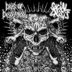 DAYS OF DESOLATION // SOCIAL CRISIS - split 7""