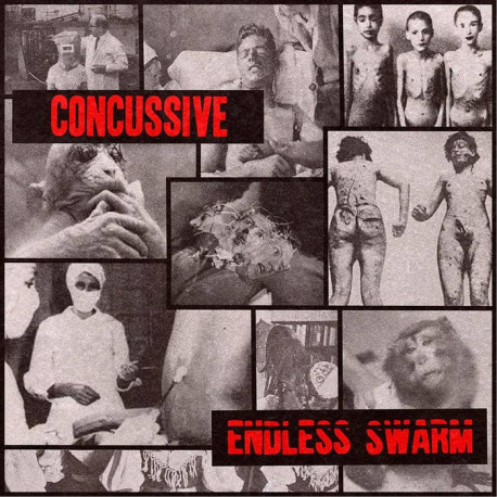 CONCUSSIVE // ENDLESS SWARM - split 7""